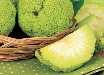 Рецепты с Адамовым яблоком