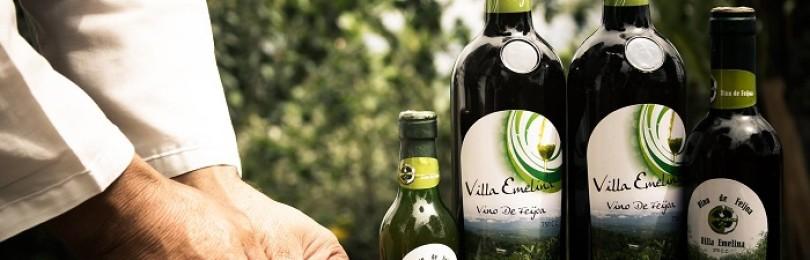 Вино из фейхоа: экзотический рецепт, не имеющий аналогов в мировом виноделии