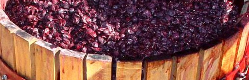 наливка из виноградной мезги