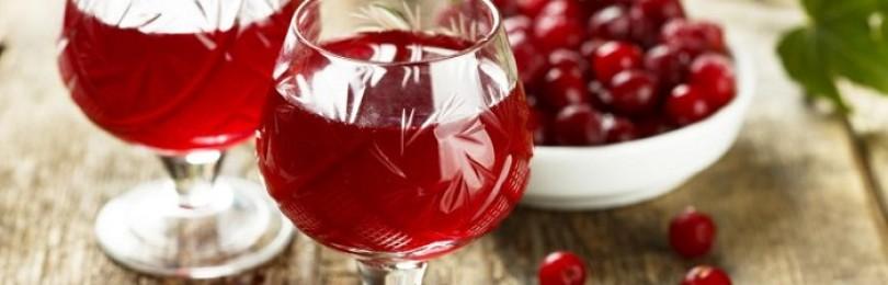 Настойка «Клюковка» на водке – приготовление напитка в домашних условиях