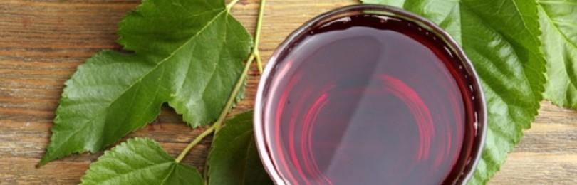 Как делать вино из шелковицы в домашних условиях