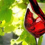Все о красном вине