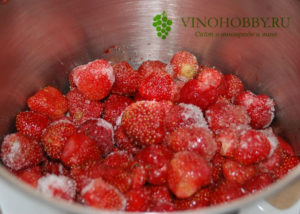 strawberry wine 1