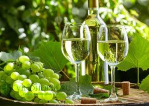 beloe-vino 2