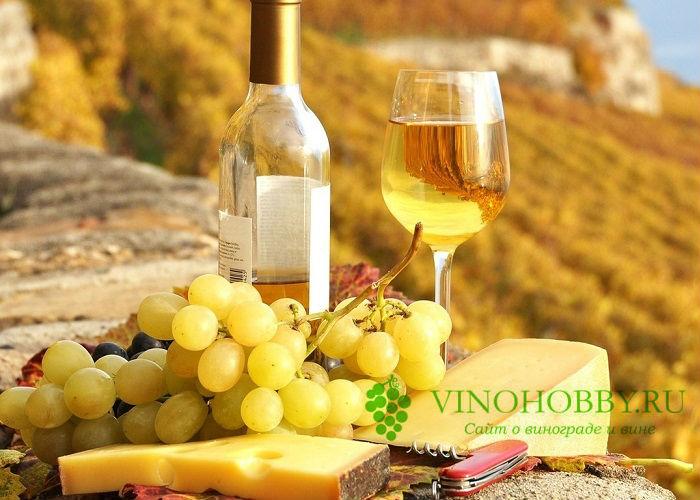 beloe-vino 3