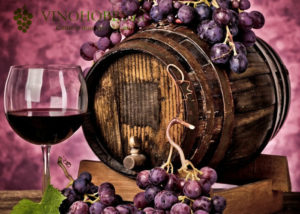 domashnee_vino_iz_vinograda 16