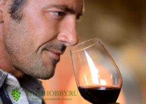polza i vred vina 3