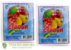 fungicid-strobi-dlya-vinograda 3