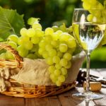 Лучшие сорта винограда для производства вина. Какие подойдут для Подмосковья и Сибири