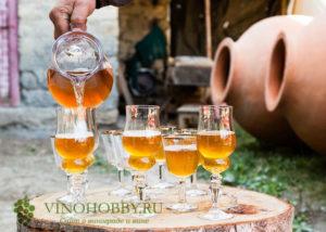 oranzhevoe-vino1