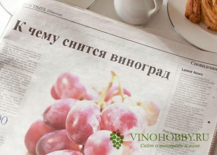 sonnik vinograd 3