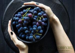 sonnik vinograd 6