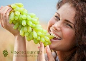 sonnik vinograd 9
