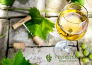 hranenie-otkrytogo-vina 6