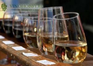 molodoe-vino 2