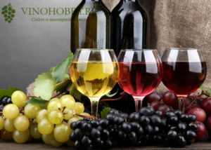 molodoe-vino 3
