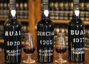 portugalskoe-zelenoe-vino 3