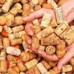 Самые популярные пробки для вина - вакуумные и другие разновидности
