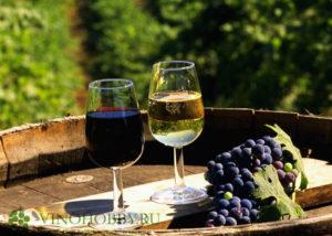 vengerskoe-vino 3