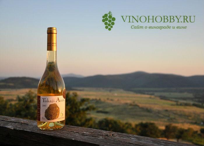 vengerskoe-vino 5
