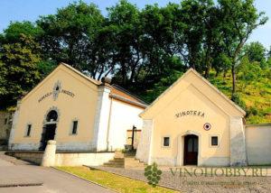 vengerskoe-vino 6