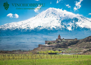 vina-armenii 7