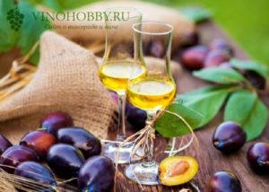 vino-iz-sliv 3