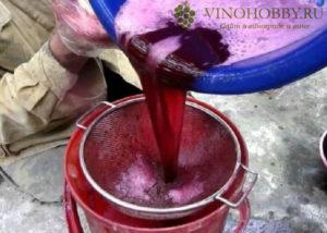 vino-izabella 2