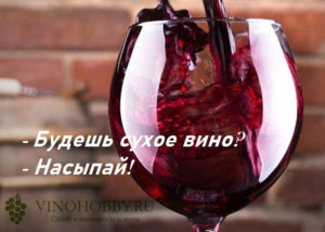 wine-cite-4