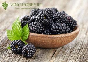 Blackberry-Wine 3