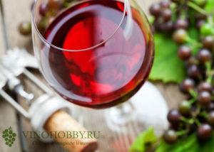 mozhno-li-pit-vino 7