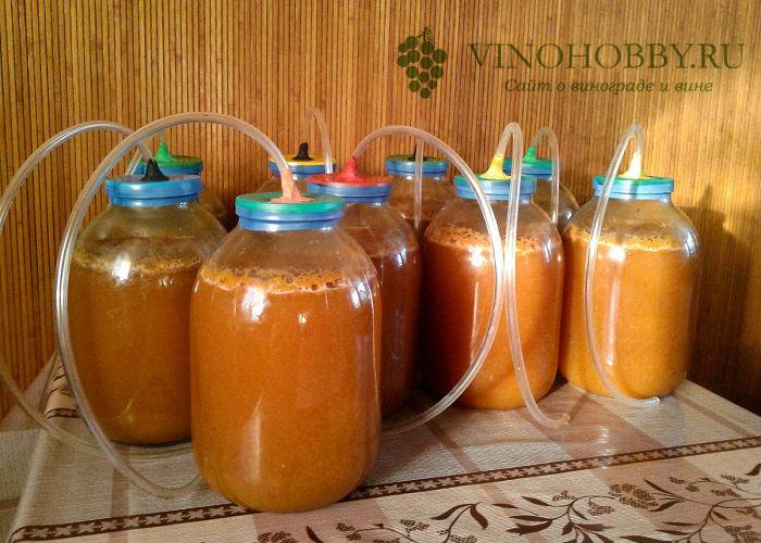 vino-iz-abrikosov 13