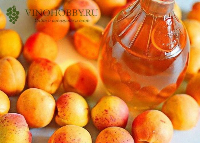 vino-iz-abrikosov 5