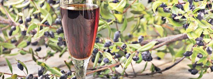 vino-iz-irgi 3