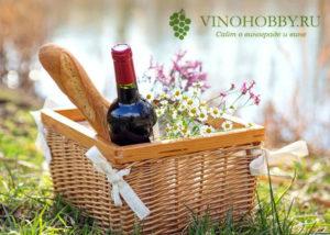 vino-pri-gastrite 7