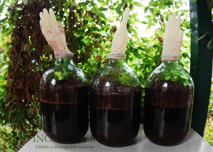 vino-iz-ryabiny 14