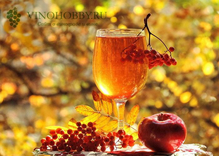 vino-iz-ryabiny 7