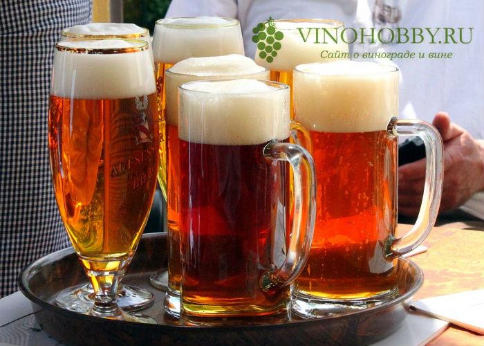 pivo 2