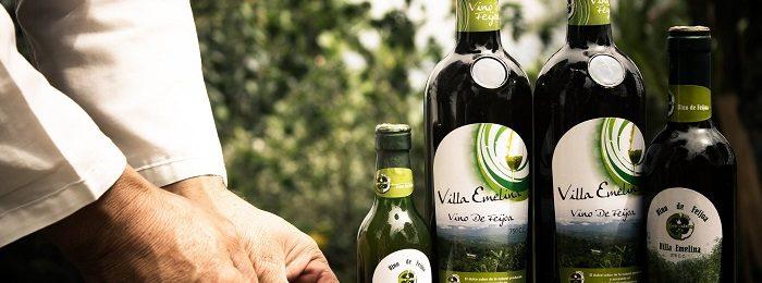 vino iz feijoa 1