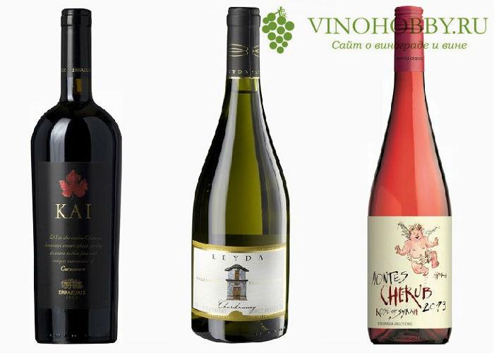 chilijskie-vina 11