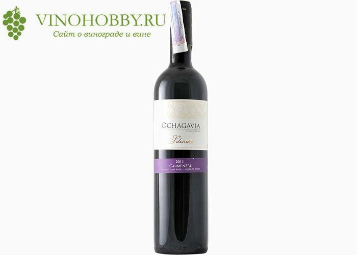 chilijskie-vina 12