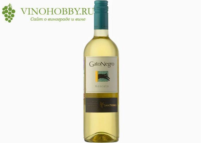 chilijskie-vina 15