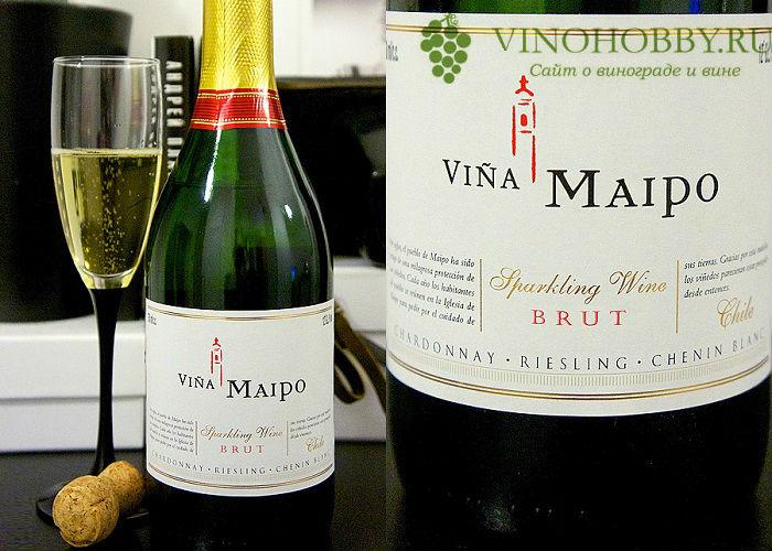chilijskie-vina 17