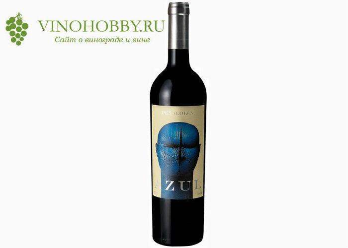 chilijskie-vina 19