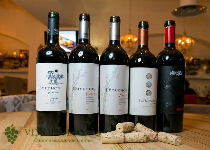 chilijskie-vina 2