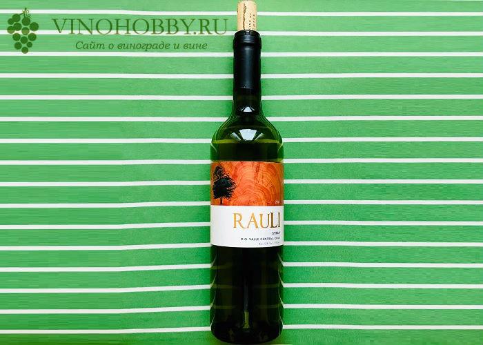 chilijskie-vina 21