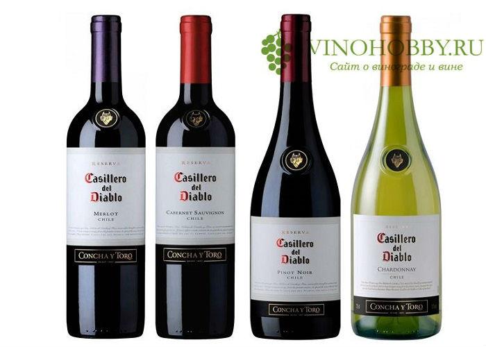 chilijskie-vina 25