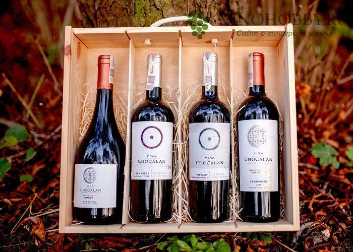 chilijskie-vina 5
