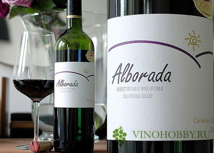 chilijskie-vina 6