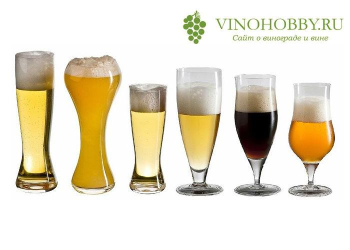 fakty-o-pive 12